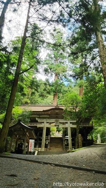由岐神社大杉と割拝殿