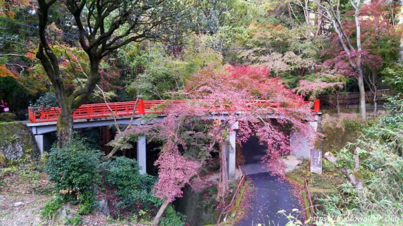 今熊野観音寺-鳥居橋-