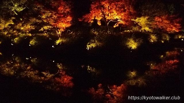 東寺 秋の特別拝観