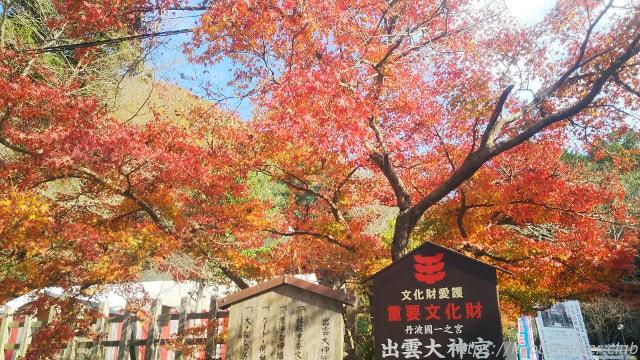 出雲大神宮秋終わりがけの紅葉