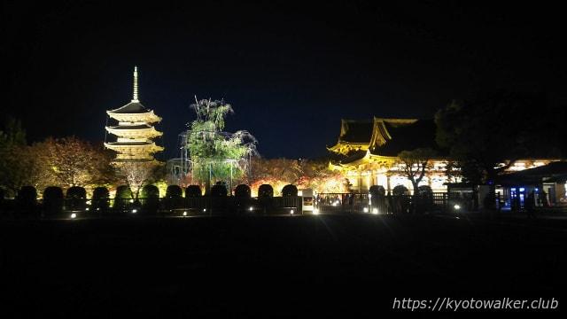 2017東寺夜間拝観1121駐車場から