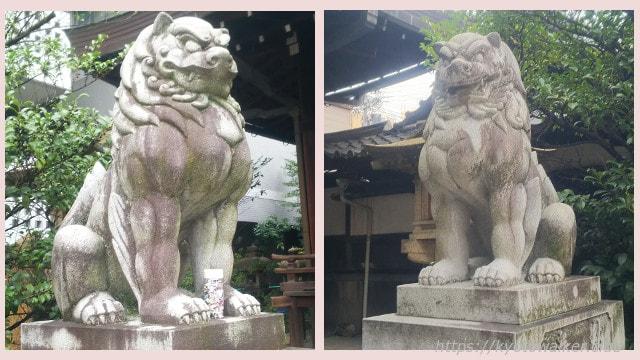 五条天神宮狛犬さんたち