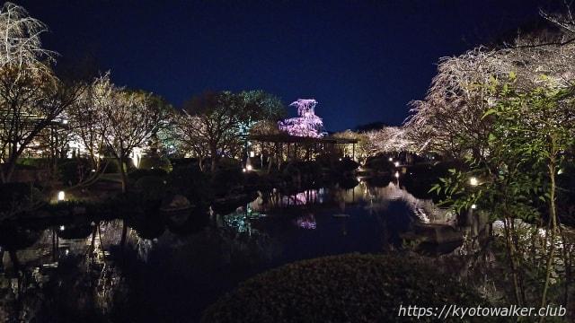 東寺夜桜20170404−4