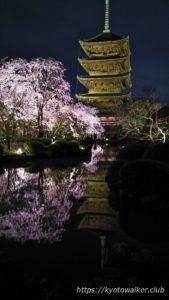 東寺夜桜20170411−2