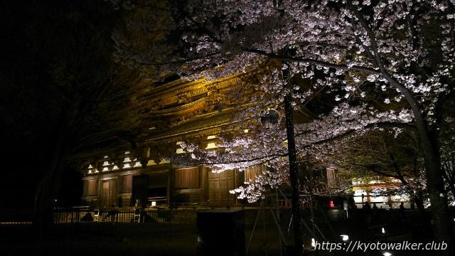 東寺夜桜20170411