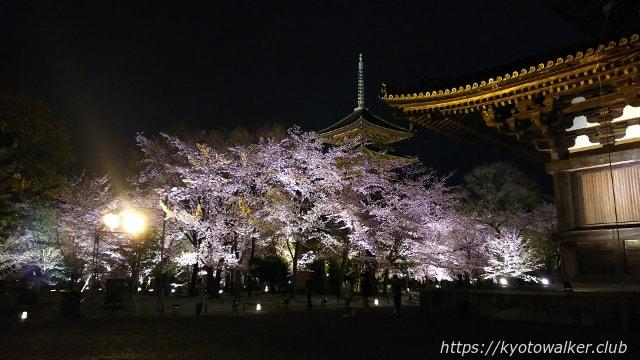 東寺夜桜20170411−7