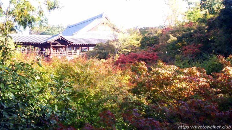 東福寺 臥雲橋から 20191112