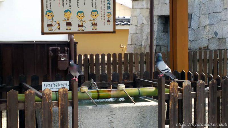 壬生寺手水舎20190530