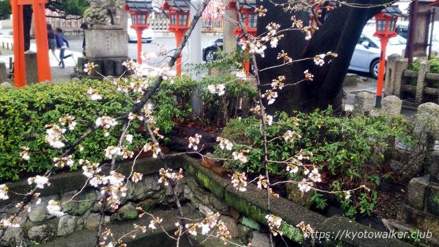 20180321 六孫王神社