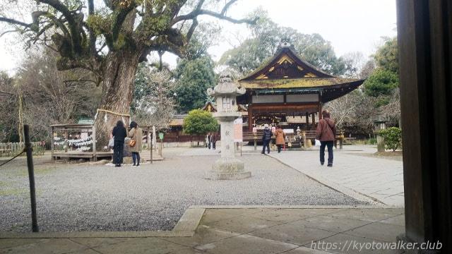 平野神社 楼門から見た拝殿