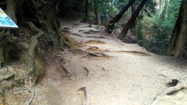 伏見神寶神社へのルート