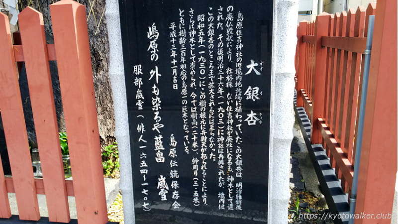島原住吉神社境外社の大銀杏