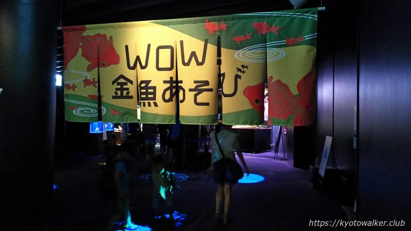 京都水族館 WOW!金魚遊びコーナー入り口