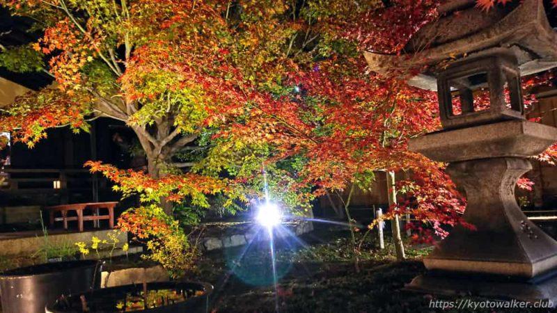 勝林寺 境内の灯篭と紅葉 20181201