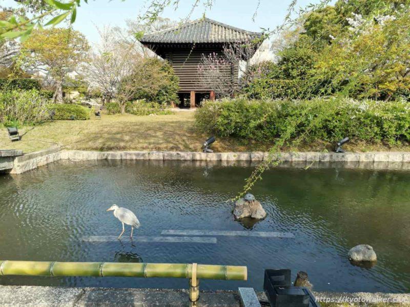 東寺 宝蔵 20210329