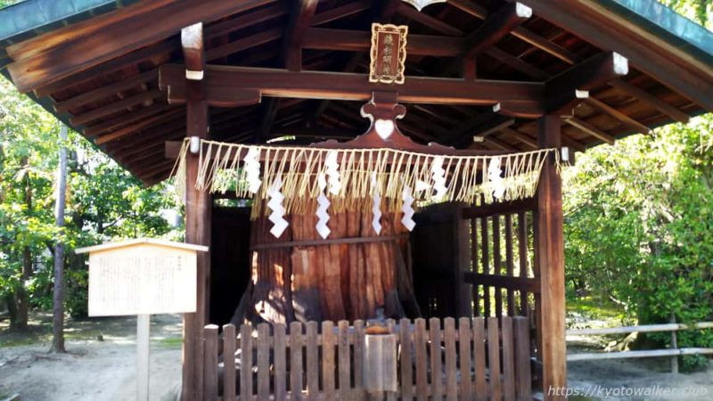 敷地神社(わら天神) 社殿横 綾杉明神 20190114