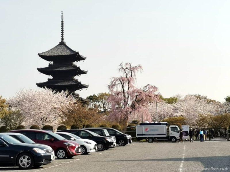 東寺 桜 20210329