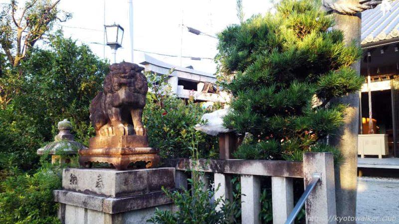 須賀神社 本殿前狛犬 20181024