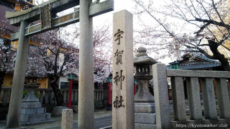宇賀神社 鳥居 東から