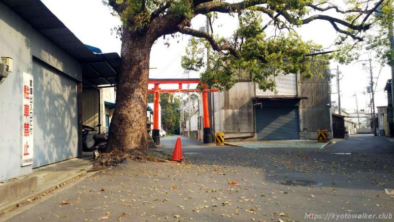 菱妻神社の赤い鳥居
