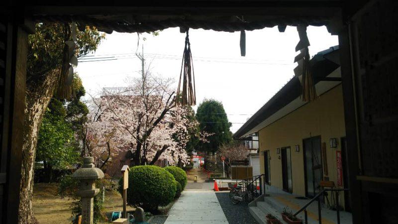 木下神社の割拝殿内から見た景色