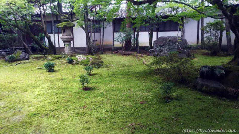 仁和寺 書院の間の庭 20191010