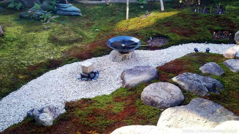 妙顕寺 五色椿と松の庭の水琴窟 20200102