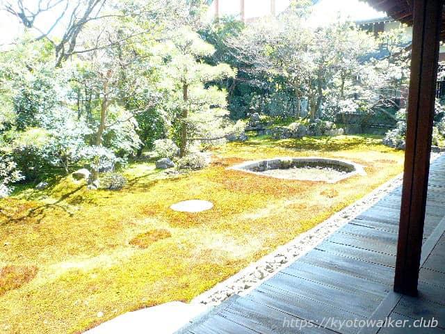 本法寺 巴の庭 20130313