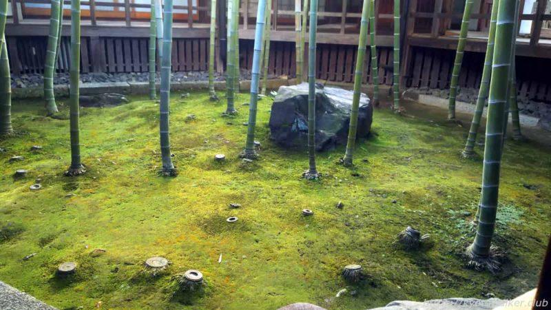 妙顕寺 孟宗竹の坪庭 20200102