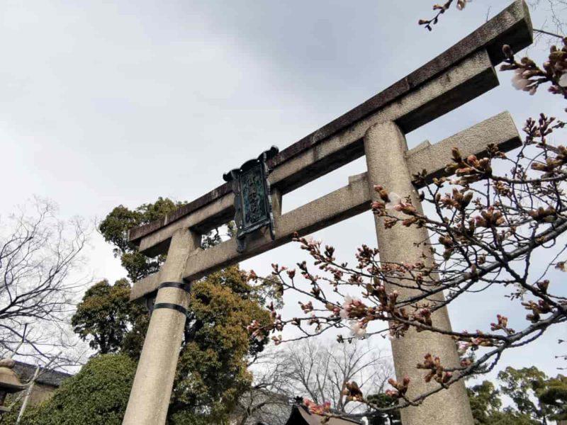 豊国神社 鳥居 20210317