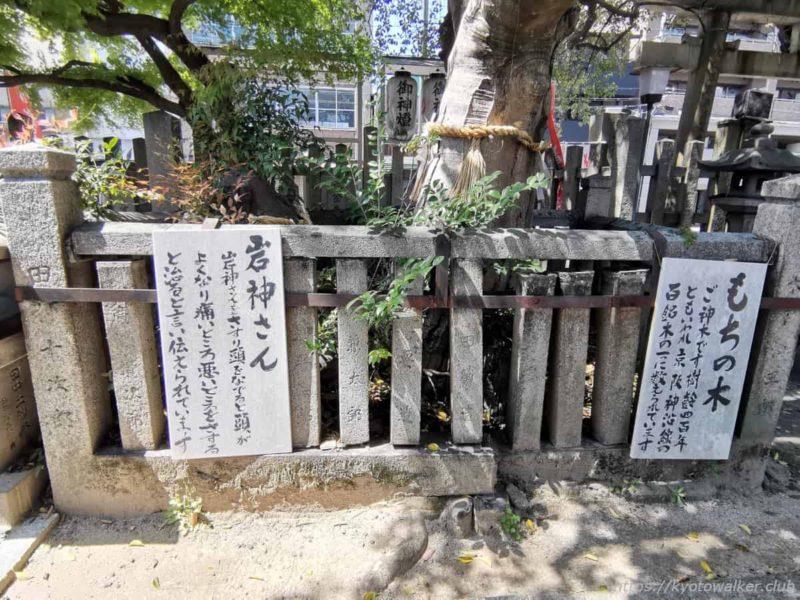 満足稲荷神社 境内 御神木と岩神様 20210411